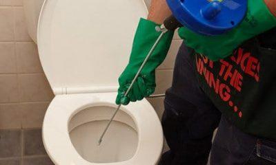 Déboucheur débouche une toilette avec un furet